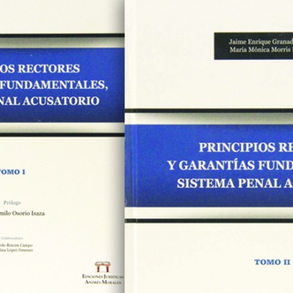 Principios Rectores y Garantías Fundamentales, Sistema Penal Acusatorio