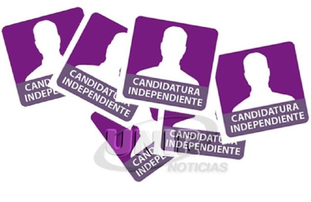 portal foro jurídico candidatos independietes