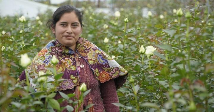 foro jurídico Impulsan aprendices en comunidades indígenas