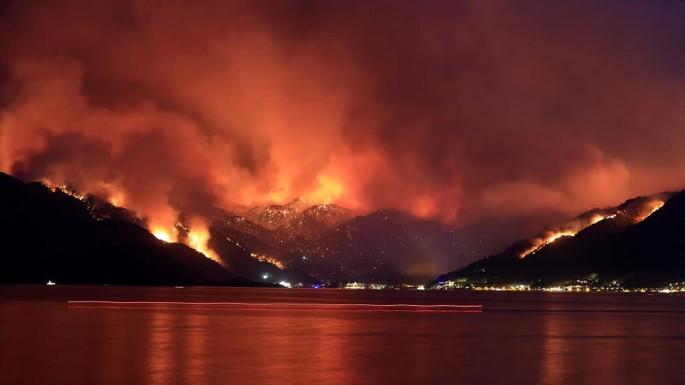 foro jurídico Incendios en turquía